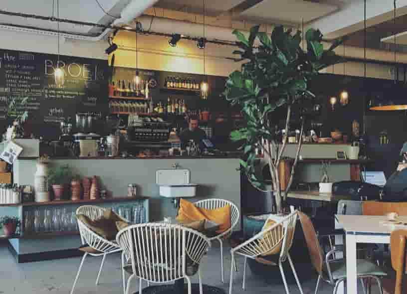 女性 起業 職種 カフェ