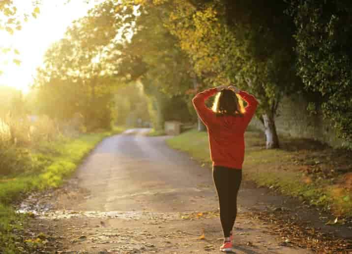起業 ランキング 健康